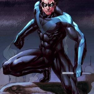 Danny Shepherd Nightwing Stylish Costume Jacket 22